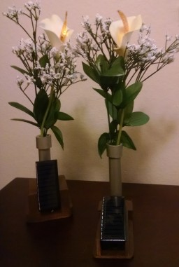 Flaming Lilys V2 & V3