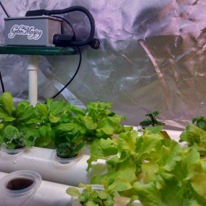 cropped-hydromazing_smart_garden_system
