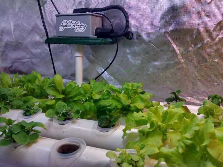 hydromazing_smart_garden_system